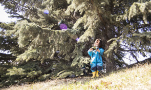 Girl Playing In Trees at winsport
